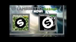 Martin Garrix & Showtek - Booyah the Animals (Lambretto Mashup)
