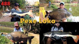 Uma festa com as Pirararas do Pexe Loko - Fishingtur 488