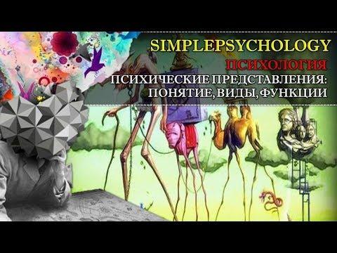 Психология. Психические представления: понятие, виды, функции