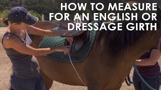 How To Measure Your Horse for English & Dressage Girth Size