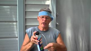 How to get rid of Red Wasps by Tim Durham