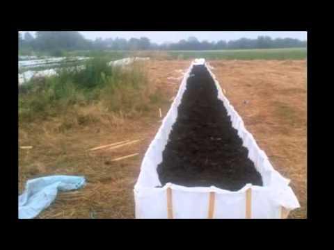 Pag-aalis ng mga parasito mula sa katawan sa pamamagitan ng gamot