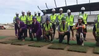 Gramilla natural es instalada en el nuevo estadio de LouCity