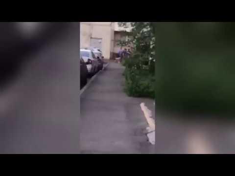 Забили до полусмерти за замечание пьяной компании мужчину в Зеленограде