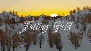 Falling Gold - Herman Fassett