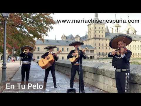 Video 5 de Mariachi Madrid America