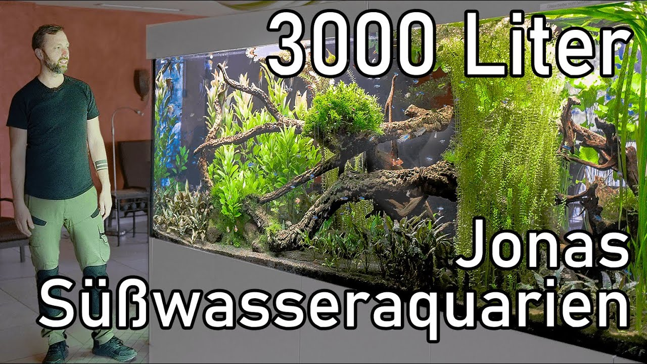Jonas XXL Aquarien | Professionelle Aquarien und Pflege-Tour (Süßwasser)