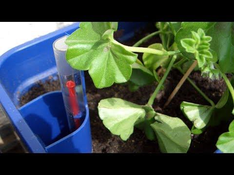 Bewässerung für Pflanzen im Test
