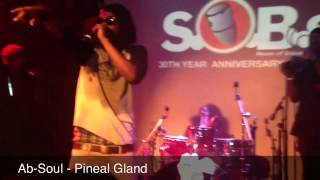 Ab-Soul Live At SOB's Terrorist Threats - Pineal Gland - Lust Demons