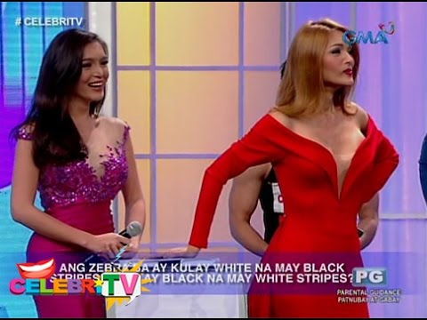 CelebriTV: Clash Of Gay Beauty Queens