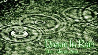 Dream In Rain by Plum / 흩날리는 빗속에서 춤을 추는 듯한 노래