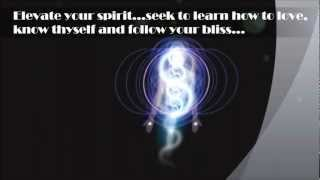 ~SPIRITS IN THE MATERIAL WORLD~