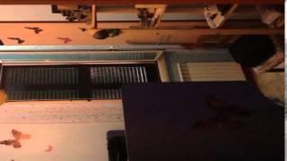 preview picture of video 'Appartamento in Vendita da Privato - Via Tiburtina Valeria km 40.100 (villaggio Acea) Snc, Vicovaro'