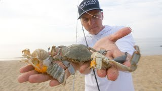 How to Rig a Blue Crab - All Popular Rigs for Giant Fish and More Fish!