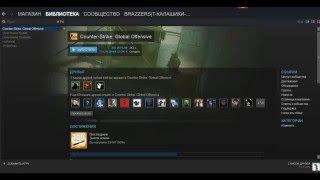 Вечная установка CS GO (STEAM)