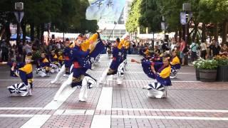 舞華(こころの華・たまよさこい2011・まち交流館前・パレード)