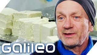 60 Mio.€ Umsatz! Das ist der  Tofu-König von Deutschland   Galileo   ProSieben