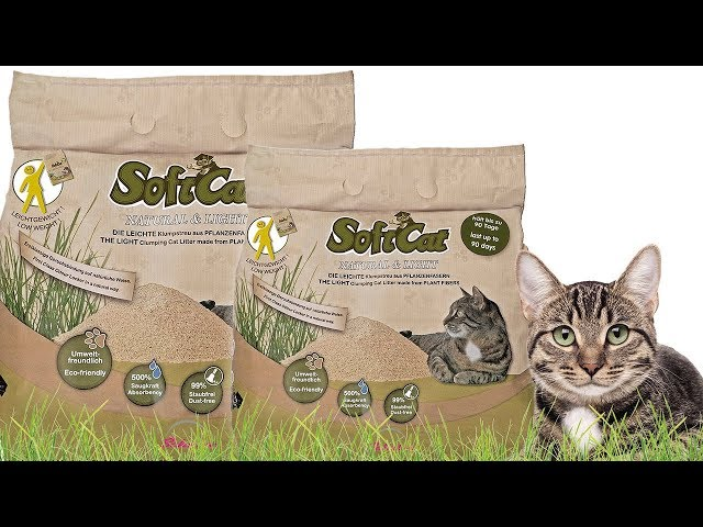 Preview: SoftCat in a paper bag