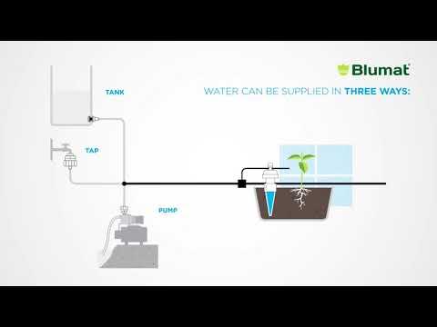 Blumat Wasser Anbindung mit Pumpe