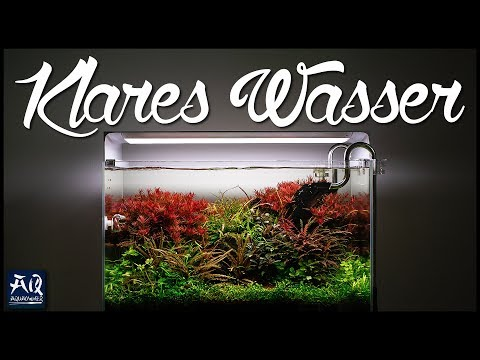 NIE WIEDER TRÜBES WASSER | so wird dein Wasser wieder glasklar und sauber | AquaOwner