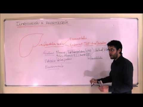 HEPATOLOGIA INTRODUCCION PARTE 1