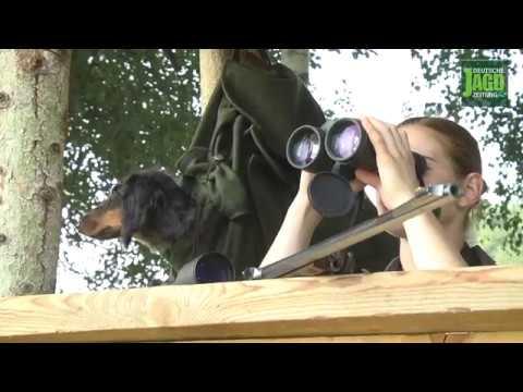 DJZ-Test: Hubertus Hunde-Rucksack
