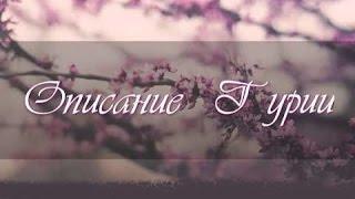 Райские Гурии, и их Описание | Шейх Умар ас-Саадан