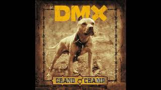 DMX We Go Hard