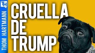 Will Trump Rob Dog?