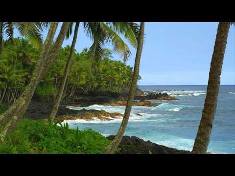 Video of Hawaiian Waves Video & Alarm