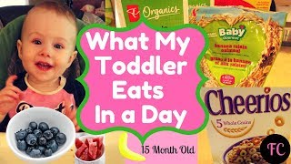 WHAT MY 15 Month TODDLER EATS IN A DAY #iamacreator #toddlermeals #routine