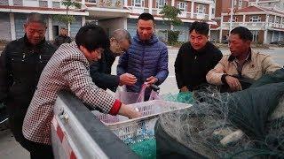 阿烽出海抓到大几十斤鱼,用车拉到村里去卖,引村民围抢大赚几千