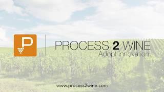 Process2Wine video
