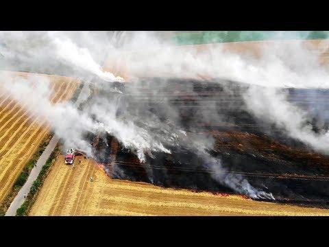 Požár pole u Mirošova 5.8.2019