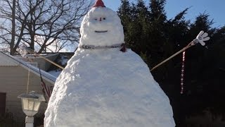 Family Seeks Donors To Help Keep Their Beloved Snowman Alive
