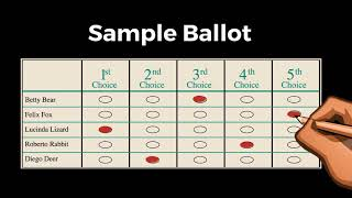 Santa Fe's 1st Ranked Choice Voting Election is on March 6th!