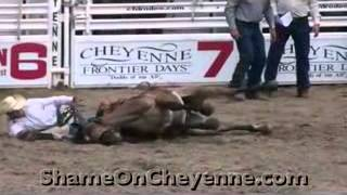 Video Rodeo Day