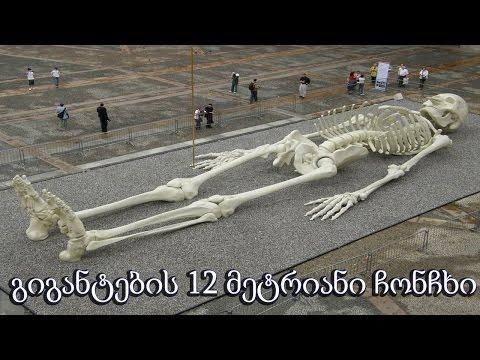 გიგანტების 12 მეტრიანი ჩონჩხი  (ვიდეო)