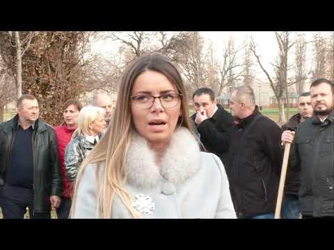GrO SNS u Smederevu organizovao akciju pošumljavanja u Tvrđavi
