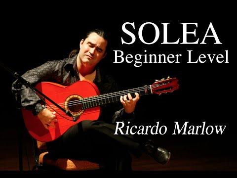 EliteGuitarist.com - Solea for Beginners Flamenco Guitar Lesson - Ricardo Marlow 1/7