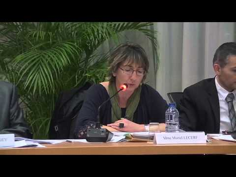 Conseil Municipal de Vaulx-en-Velin du 16 décembre 2015