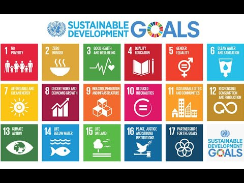Have you ever wondered why SDGs and multilateralism matter for the COVID-19 response?