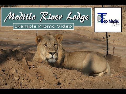 Moditlo River Lodge| Top Media by Rudi | Promo Video | African Safari Lodge