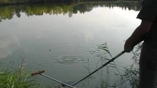 Pêche à L'anglaise à St- Remy De Provence