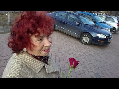 Patogen koński w Petersburgu