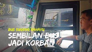 Total Sembilan Bus Jadi Korban penyerangan Orang Tak di Kenal, Penumpang Sampai Terluka