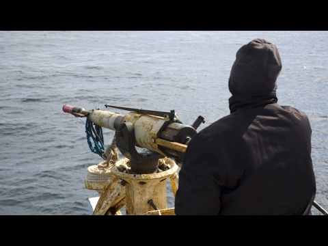 Norway opens whaling season with huge kill quota