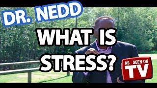 Dr Ken Nedd - What Is Stress