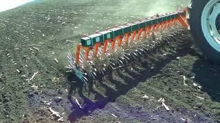 Ротационная борона по подсолнуху