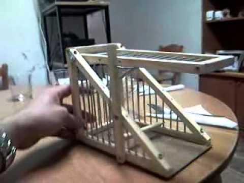 jaulas trampa para jilgueros - Videos   Videos ...